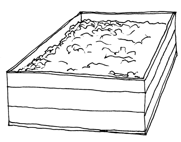 black and white illustration of a wooden box containing cacao